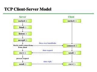 TCP Client-Server Model