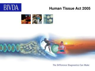 Human Tissue Act 2005