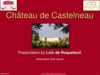 Ch teau de Castelneau