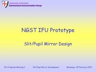 NGST IFU Prototype