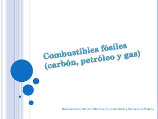 Combustibles fósiles (carbón, petróleo y gas)
