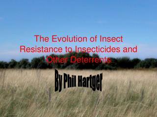 The Evolution of Insect Resistance to Insecticides and Other Deterrents