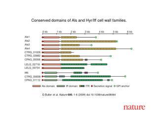G Butler  et al.  Nature 000 , 1- 6  (2009) doi:10.1038/nature080 64