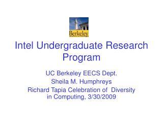 Intel Undergraduate Research Program