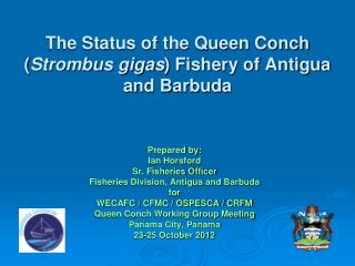 The Status of the Queen Conch ( Strombus gigas ) Fishery of Antigua and Barbuda