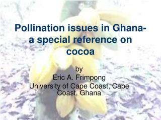 Pollination issues in Ghana- a special reference on cocoa