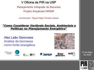 V Oficina de PIR na USP Planejamento Integrado de Recursos Projeto Ara atuba FAPESP  Coordenador: Miguel Edgar Morales U