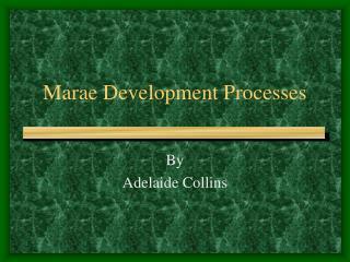 Marae Development Processes