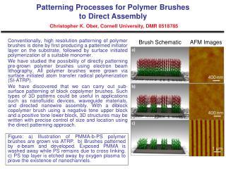 Brush Schematic
