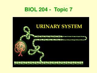BIOL 204 -  Topic 7
