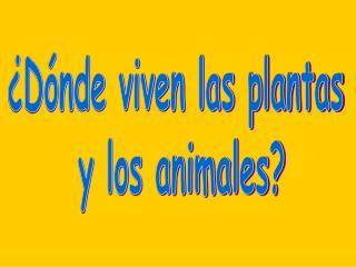 �D�nde viven las plantas  y los animales?