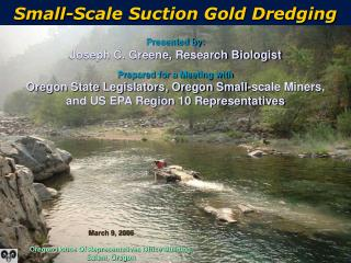 Small-Scale Suction Gold Dredging