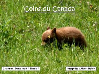 Coins du Canada