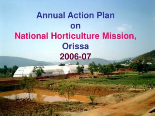 Annual Action Plan  on  National Horticulture Mission,  Orissa  2006-07