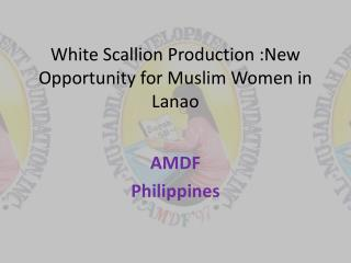White Scallion Production :New Opportunity for Muslim Women in  Lanao