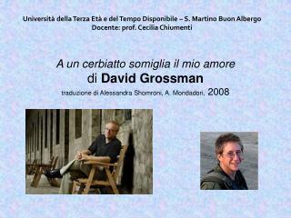 A un cerbiatto somiglia il mio amore di David Grossman traduzione di Alessandra Shomroni, A. Mondadori, 2008