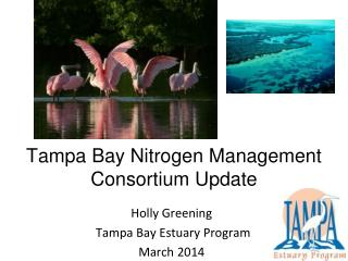Tampa Bay Nitrogen Management Consortium Update