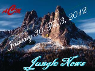 Jungle News