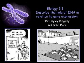 Biology 3.3  -  Describe the role of DNA in relation to gene expression