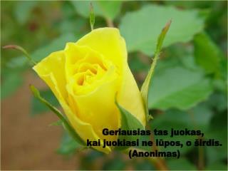 Geriausias tas juokas,  kai juokiasi ne lūpos, o širdis. (Anonimas)