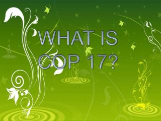 WHAT IS COP 17?