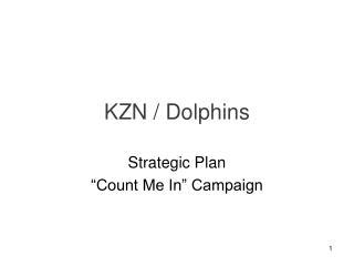 KZN / Dolphins