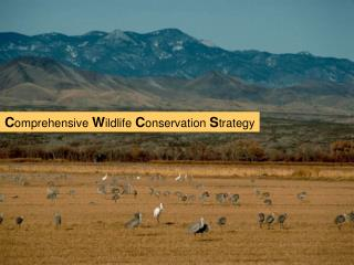 Comprehensive Wildlife Conservation Strategy