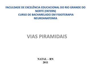 FACULDADE DE EXCEL NCIA EDUCACIONAL DO RIO GRANDE DO NORTE FATERN  CURSO DE BACHARELADO EM FISIOTERAPIA NEUROANATOMIA
