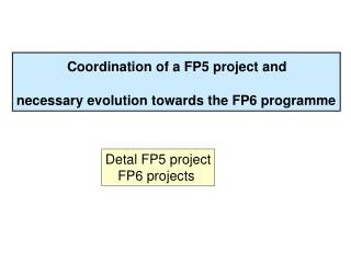 Coordination of a FP5 project and  necessary evolution towards the FP6 programme