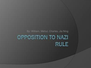 Opposition to Nazi Rule
