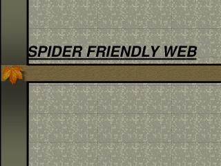 SPIDER FRIENDLY WEB