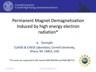 Permanent Magnet Demagnetization Induced by high energy electron radiation*