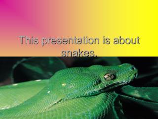This presentation is about snakes.