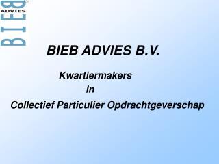 BIEB ADVIES B.V.