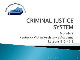 CRIMINAL JUSTICE SYSTEM