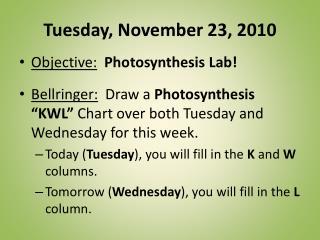 Tuesday, November 23, 2010