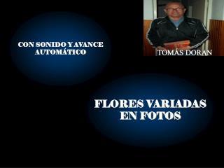 CON SONIDO Y AVANCE AUTOMÁTICO