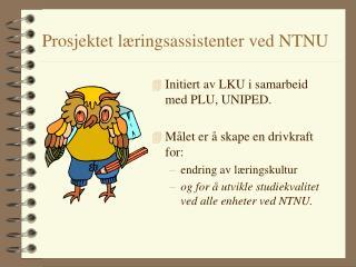 Prosjektet læringsassistenter ved NTNU
