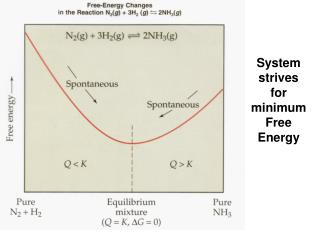 System strives for minimum Free Energy