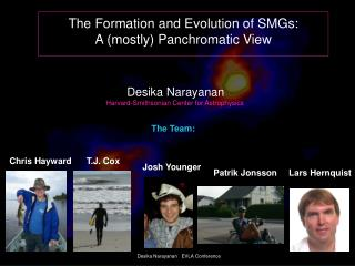 The Formation and Evolution of SMGs: A mostly Panchromatic View
