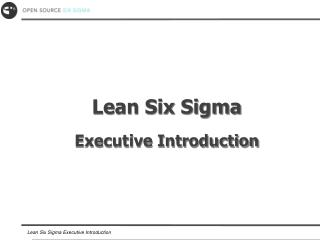 Lean Six Sigma Executive Introduction