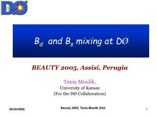 B d   and B s  mixing at D �