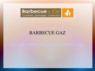 Napoléon Barbecue au Gaz en France