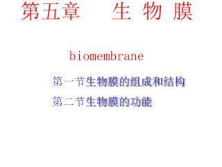 第五章   生 物 膜 biomembrane