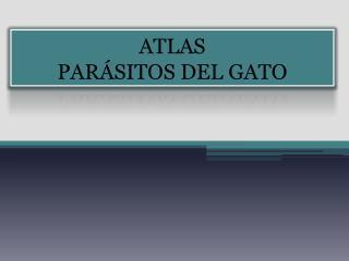 ATLAS PAR SITOS DEL GATO