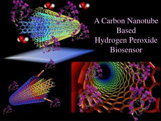 A Carbon Nanotube  Based  Hydrogen Peroxide Biosensor