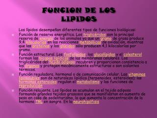 FUNCION DE LOS  LIPIDOS