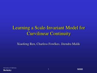 Learning a Scale-Invariant Model for Curvilinear Continuity