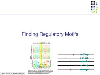 Finding Regulatory Motifs