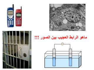 ماهو  الرابط العجيب بين الصور !!!